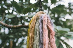Handmade series: plant dyes